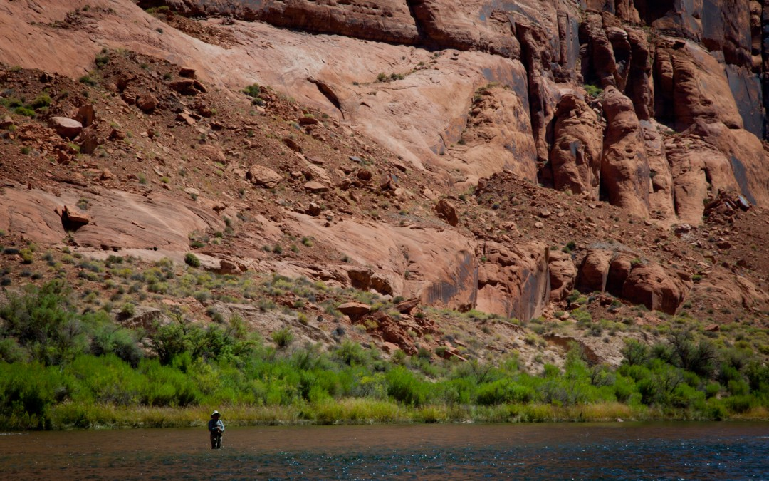A fisherman downstream from Glen Canyon Dam.