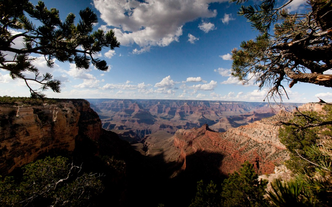 View from Mather Point overlook.